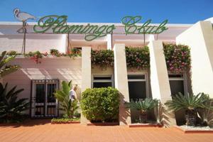 Flamingo Club 3